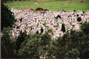 Kegyeleti fejlesztések Ecséd község temetőjében