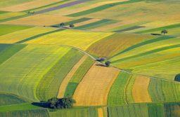 Közös földtulajdonok számának csökkentése